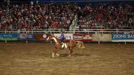 koń : cowgirl barrel racing in slow motion at a prca professional rodeo Wideo