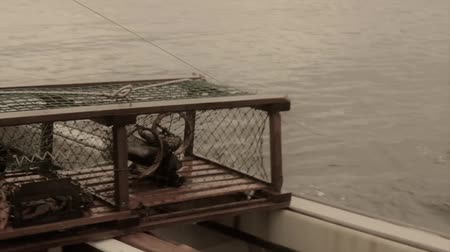 омар : fishermen catching lobster on a boat in nova scotia canada Стоковые видеозаписи