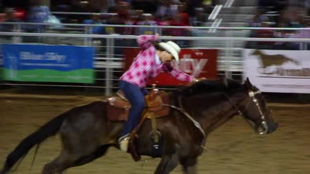 арена : A cowgirl barrel racing at the rodeo