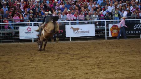 buty : Cowboys ride saddleback in a national PRCA rodeo