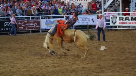 cowboy hut : Cowboys reiten in einem nationalen PRCA Rodeo-Pferd- Videos
