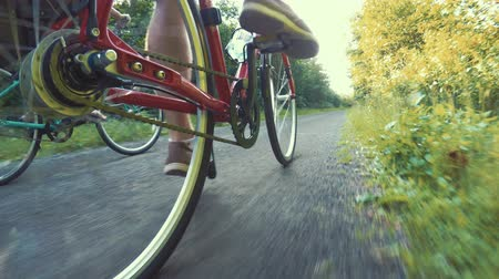 cyclists : A fun shot of couple biking in a green forest on bike trail Stock Footage
