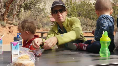 food state : A family eats at Kodachrome Basin state park gimbal shot Stock Footage