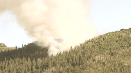 silvicultura : A huge mountain wildfire and smoke Stock Footage