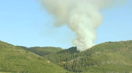 silvicultura : A large mountain wildfire and smoke