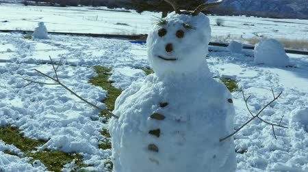 xale : A large snow man with antlers
