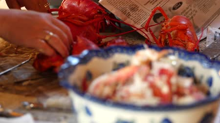 омар : A person cracks open lobsters for dinner