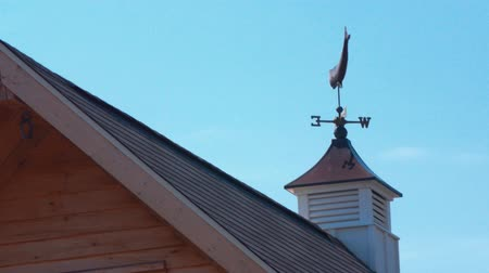 навес : A whale weather vane on barn cupola blowing in wind