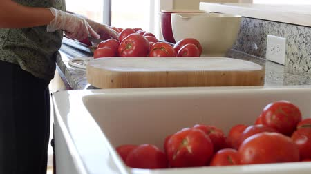 ocet : A woman makes fresh salsa with tomatos