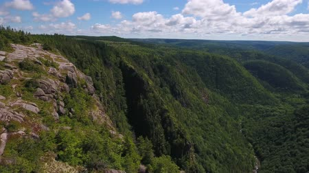 cape breton : Aerial high shot of a family above tall cliff and a mountain forest