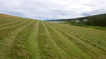 cape breton : Aerial of farmer cuts the grass in field by ocean coastline