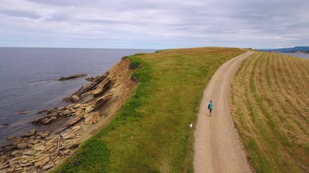 cape breton : Aerial shot a mother and her baby walking along rugged ocean coast
