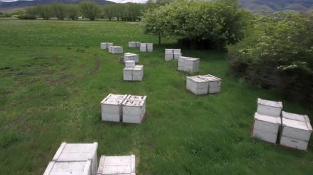 hive : Aerial shot flying over the bee boxes in a field