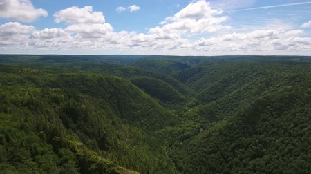 cape breton : Aerial shot of a deep gorge and a mountain forest Stock Footage