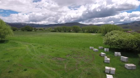 hive : Aerial shot of flying over bee boxes in a field