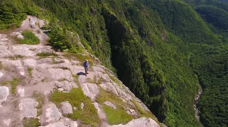 cape breton : Aerial shot of man above a tall cliff and a mountain forest Stock Footage