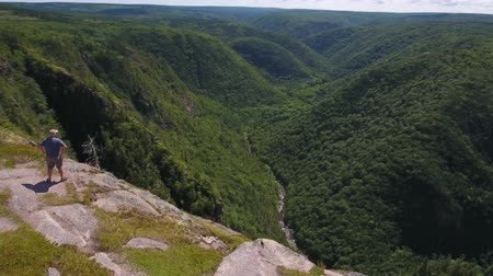 cape breton : Aerial shot of man above cliff and mountain forest