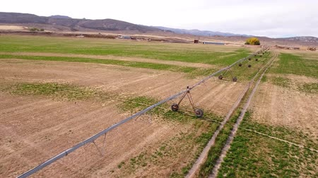 irrigate : Aerial travelling shot of a farmers dry field in the hot summer