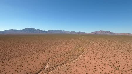 nevada : Beautiful dry desert in Nevada Stock Footage