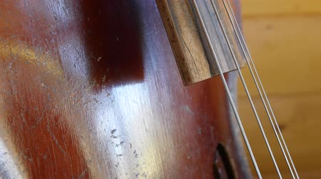 enstrüman : Cool old bass fiddle in a home Stok Video