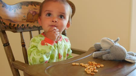 jíst : Cute toddler eating cereal in his highchair with stuffed animal Dostupné videozáznamy