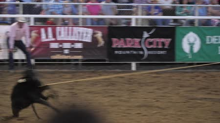 арена : Editorial a calf roper at a PRCA Oakley rodeo slow motion