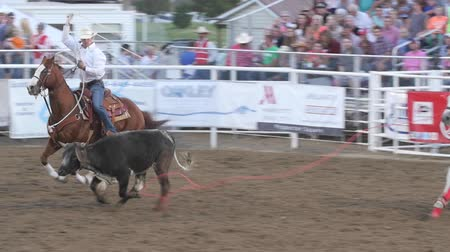 cowboy hut : Editorial Coboys Team roping in einem PRCA Rodeo Event Zeitlupe Videos