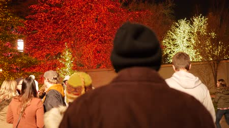 só : Editorial of families in temple square christmas lights