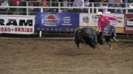 арена : Editorial rodeo clown teases giant bull at a PRCA rodeo