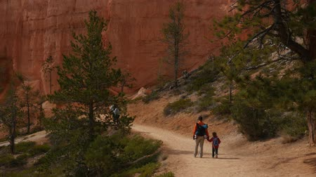 martelo : Families on a trail in Bryce Canyon National Park Stock Footage