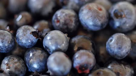антиоксидант : Fresh picked blueberry pile dolly shot
