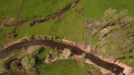 pantanal : Gorgeous aerial shot above a river in green springtime Stock Footage