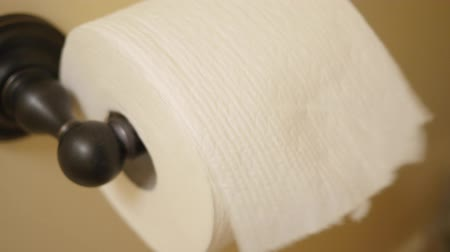enrolado : Hand grabs toilet paper in the bathroom