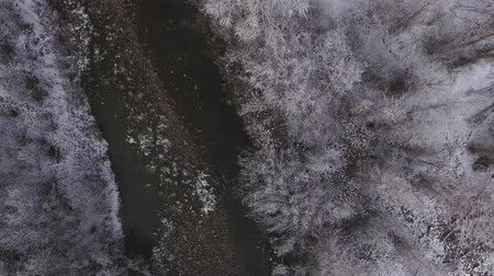inferior : High aerial shot of a beautiful snowy river and tall trees Vídeos