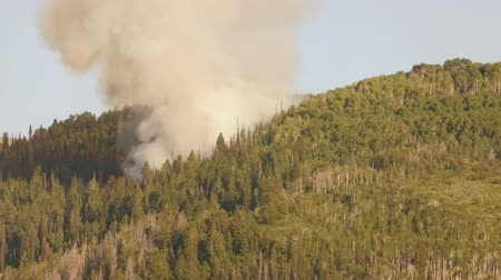 hamu : Huge mountain wildfire with smoke on summer day