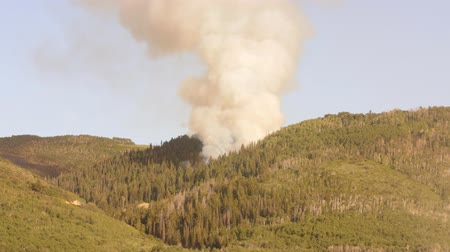 silvicultura : Large mountain wildfire and smoke