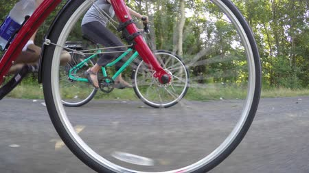 kask : Low shot couple riding on bike trail in forest