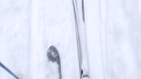 лыжник : People cross country skiing in new snow