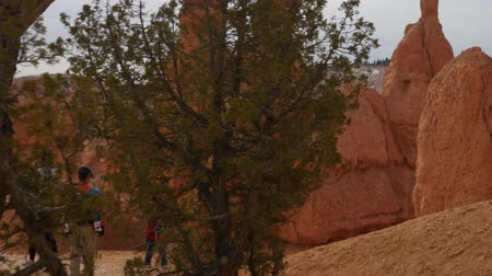 martelo : People hiking on a trail in Bryce Canyon National Park