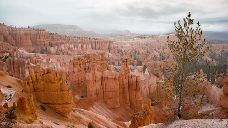 martelo : Timelapse of fluffy clouds at bryce canyon national park