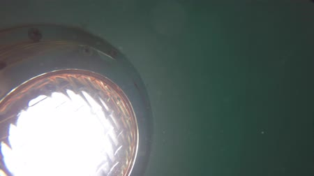 тренер : Underwater shot of a light in the swimming pool