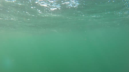 cape breton : Underwater shot of beautiful rough ocean waves on surface