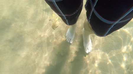 masculino : Underwater shot of mans bare feet walking along a sand Stock Footage