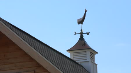 навес : Whale weather vane on barn cupola blowing in wind Стоковые видеозаписи