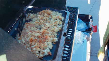 burmak : Woman cooking potato hash browns while camping Stok Video
