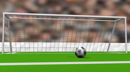 fotbal : Soccer Goal (HD). Computer Animation of a soccer ball scoring a perfect goal at center. Ball stops near the viewer after bouncing on the net. Out of focus people and flashes spark behind it.