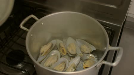 yeni zelanda : Steamed Mussels Pot Open Close (HD). Steamed Green Mussel shells from New Zeland with pot opening and closing. Ambient sound included.