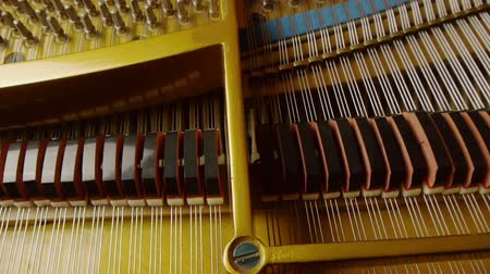 fortepian : Grand Piano Strings & Keys With Motorized Dolly Motion.