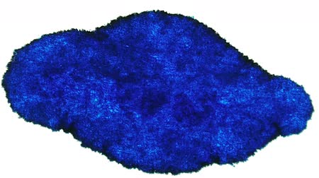 plama : Blue Ink Stain Expansion (HD). Blue Ink Expands over time lapse on a white fiber surface.