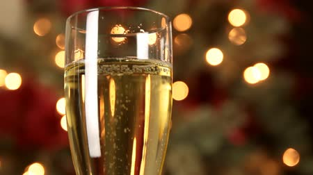 şarap kadehi : Champagne Glass Bubbling with Christmas Tree Out of Focus Background
